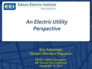 An Electric Utility Perspective