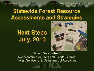 Statewide  Forest Resource Assessments and  Strategies