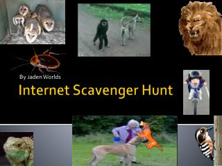 Internet Scavenger Hunt