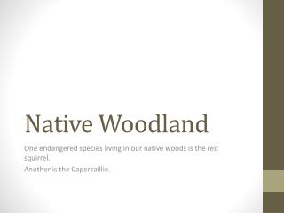 Native Woodland