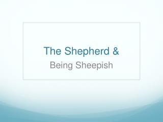 The Shepherd &