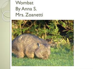 Wombat By  Anna  S. Mrs.  Zoanetti