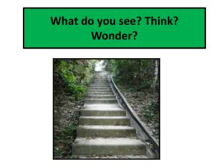 What do you see? Think? Wonder?