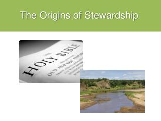 The Origins of Stewardship
