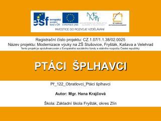 PTÁCI  ŠPLHAVCI