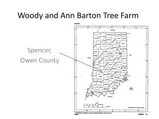 Woody and Ann Barton Tree Farm