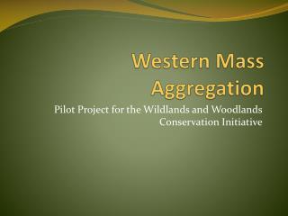 Western Mass Aggregation