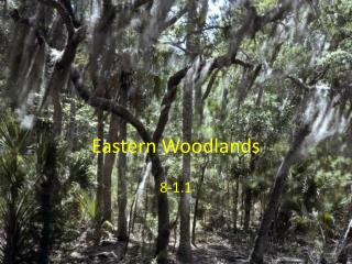 Eastern Woodlands