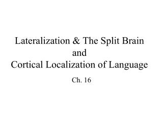 Lateralization  The Split Brain and Cortical Localization of Language