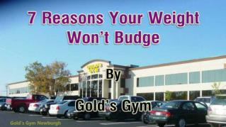ppt 26139 7 Reasons Your Weight Won t Budge