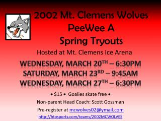 2002 Mt. Clemens Wolves  PeeWee  A Spring Tryouts