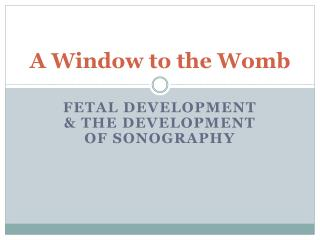 A Window to the Womb