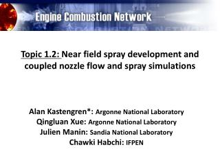 Topic 1.2:  Near field  spray development and  coupled nozzle flow and  spray simulations