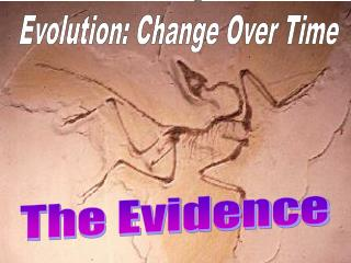 Evolution: Change Over Time