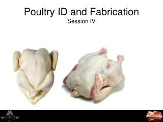 Poultry ID and Fabrication Session IV