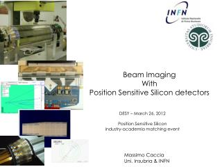 Beam Imaging  With Position Sensitive Silicon detectors