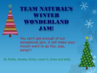Team Natural's Winter Wonderland jam!