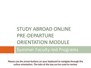 Summer Faculty-led Programs