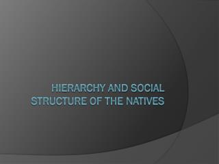 Hierarchy and social structure of the Natives