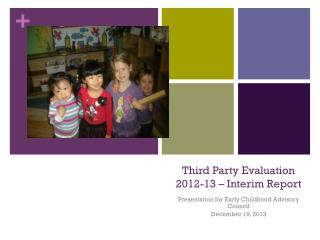 Third Party Evaluation 2012-13 � Interim Report
