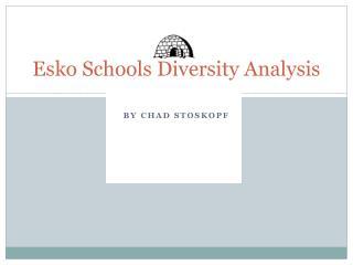 Esko Schools Diversity Analysis