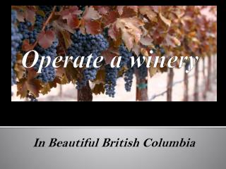 Operate a winery