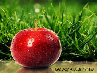 Red Apple,  Autumn  RM