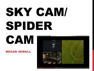 Sky Cam/ spider cam