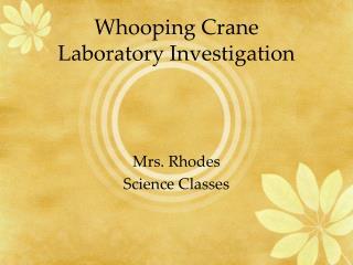 Whooping Crane Laboratory Investigation