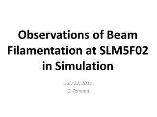 Observations of Beam  Filamentation  at SLM5F02 in Simulation