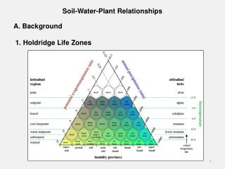 Soil-Water-Plant Relationships A. Background		  1.  Holdridge  Life Zones