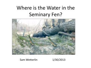 Where is the Water in the Seminary Fen?