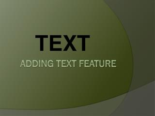 Adding Text Feature