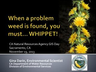 When a problem weed is found, you must… WHIPPET!