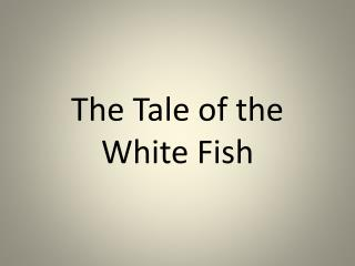 The Tale of the White Fish