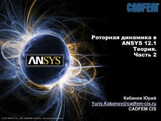 Роторная динамика в   ANSYS  12 . 1 Теория. Часть 2