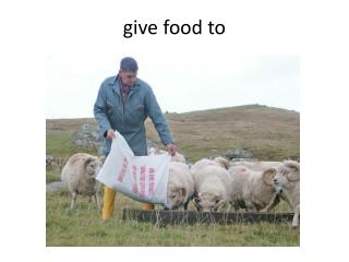 give food to