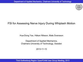 FSI for Assessing Nerve Injury During Whiplash Motion