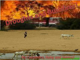 Droughts and Bushfires!