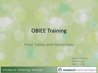 OBIEE Training