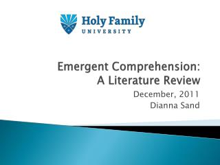 Emergent Comprehension:  A Literature Review