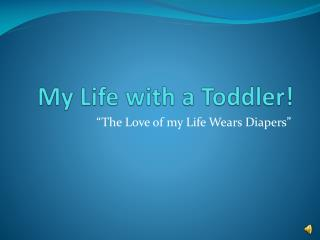 My Life with a Toddler!