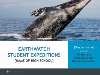 [Teacher Name]  presents: Whales and Dolphins Under  the California Sun