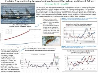 Predator Prey relationship between Southern Resident Killer Whales and Chinook Salmon