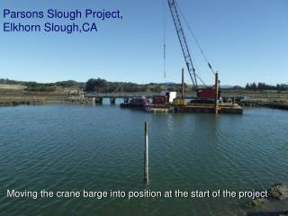 Parsons Slough Project,  Elkhorn  Slough,CA
