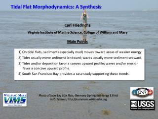 Tidal  Flat  Morphodynamics:  A  Synthesis