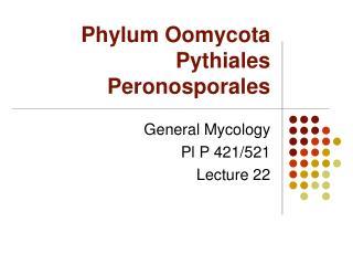 Phylum Oomycota Pythiales Peronosporales