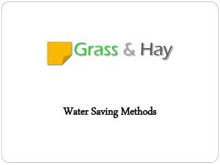 Grass  & Hay
