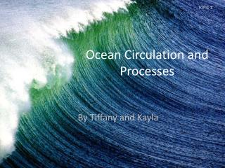 Ocean Circulation and Processes