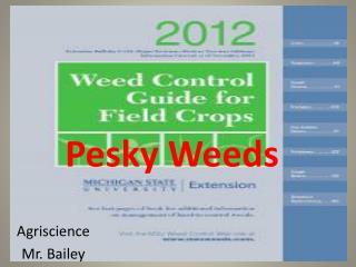 Pesky Weeds